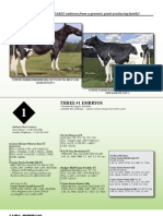 Sale Catalog - Holstein Plaza Online Embryo Auction