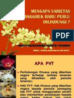 Materi Anggrek April & Banten