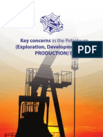 Key Concerns in the Petroleum - A5 24 May 2012