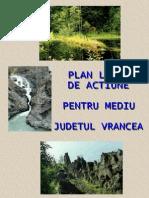 5785 Plam Vrancea