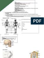 Anatomi Nota Ringkas