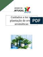 CUIDADOS A TER NA PLANTAÇÃO DE ERVAS AROMÁTICAS (1)