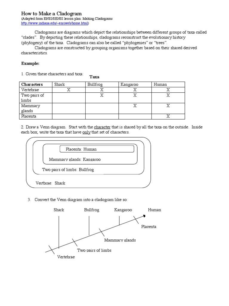 32 Biological Classification Worksheet Answer Key ...