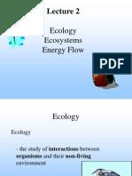 L2 Ecology