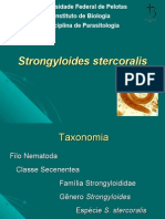 16 Aula Strongyloides Stercoralis