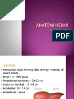 ANATOMI HEPAR-1