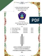Laporan Final Praktikum BK Karir Di SMK Negeri 1 Sukasada