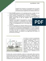 Bioacumulación