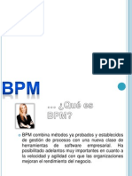 Business proyect manager