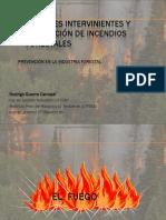 Factores Intervinientes y Prevencion de Incendios Fortales