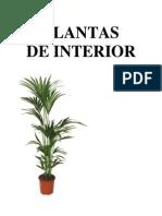 E-book Plantas de Interior