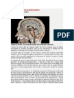 Beware the Fausts of Neuroscience