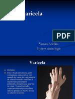 Varicela Proiect Viman Adelina