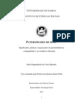 Paternidades de Hoje . Tese Doutoramento Sofia Marinho