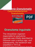 Donovania Granulomatis (2)