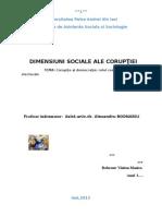 -Dimensiuni Sociale Ale Coruptiei-coruptia Si Democratia-rolul Competitiilor Electorale