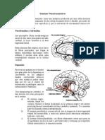 resumenneurotransmisores-090620011517-phpapp02