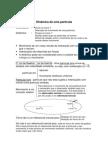 Física I - Apontamentos Teóricos - Dinâmica e Estática de um Ponto Material