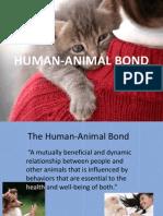 Human Animal Bond ppt