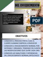 Seminario Envejecimiento.pptx