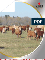 catalogo de toros de carne