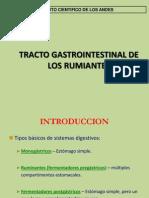 01 Aparato Digestivo de Los Rumiantes