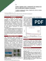 Utilização de biossorventes vegetais para o tratamento de resíduos de azul de metileno gerados nolaboratório ddático de Química