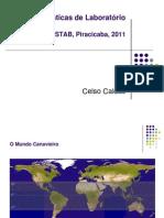 Celso Caldas - Boas Praticas Laboratoriais 2011 - Parte1