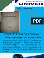 BIOLOGÍA CRIMINAL 3