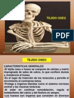 Tejido Oseo - Osteologia