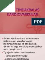 88887132 Pola Tindakbalas Kardiovaskular