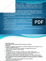 Proyecto Power(1)