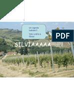 Presentazione x Silvia