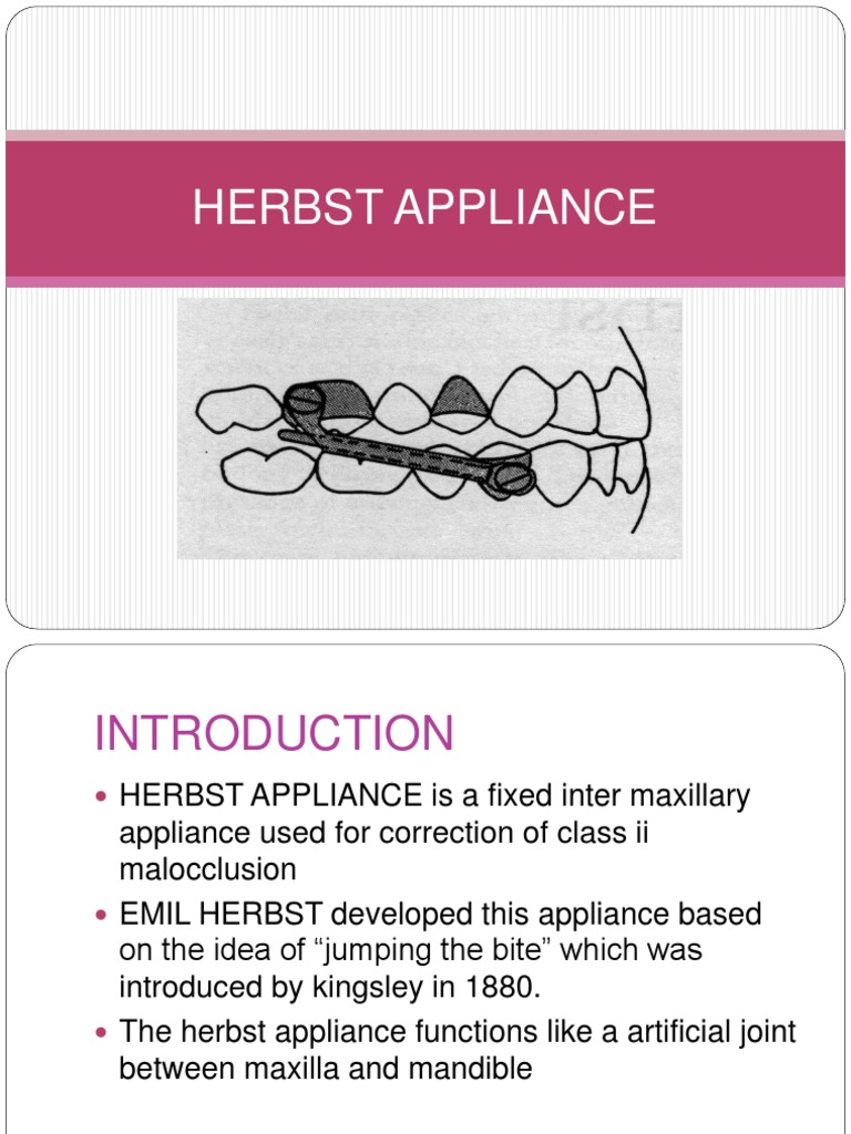 Herbst Appliance Ppt Tooth Anatomical Terms Of Location