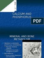 Calcium and Phosphorous