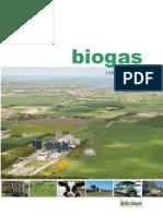 Biogas-h