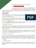 58925024 Resumo Do Livro Curso de Processo Penal