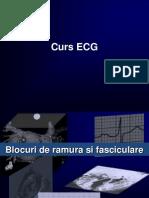 ECG Curs Aritmii
