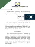 PROCEDIMENTOS ESPECIAIS NO PROCESSO DO TRABALHO.doc