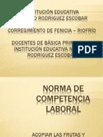 Norma de Competencia Laboral Leidy