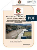 Pip Pavimentacion CASHACOTO