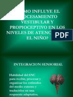 Propiocepcion y Sistema Vestibular 1193500770820258 5