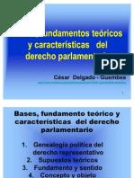 CDG - Fundamento, concepto y características del derecho parlamentario