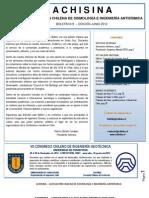 Boletín ACHISINA N° 2, Junio 2012