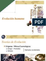 evolución humana CER 2011