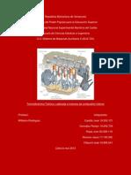 TRABAJO FINAL   Primera Evaluación   Termodinamica (Teórica)   Autoria Propia y en conjunto