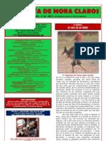 La Gazeta de Mora Claros nº 143- 22062012