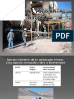 Control Ambiental Minero