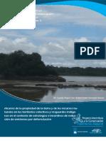 Alcance de la propiedad de la tierra y de los recursos naturales en los territorios colectivos y resguardos indígenas