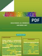 48455139-AUDITORIA-Gubernamental
